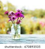 summer or spring beautiful... | Shutterstock . vector #670893535