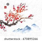 cherry sakura tree branch in... | Shutterstock .eps vector #670895266