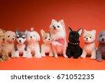 Stock photo pomeranian on the orange background 671052235