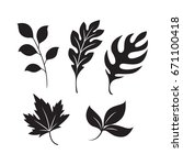 graphic leaf  vector | Shutterstock .eps vector #671100418