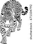 black and white vector sketch... | Shutterstock .eps vector #671104792