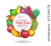 exotic and garden fruits poster ... | Shutterstock .eps vector #671144176