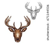 deer head sketch vector icon.... | Shutterstock .eps vector #671144536