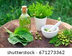 bottle of thuja infusion or oil