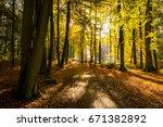 very peaceful  relaxing ... | Shutterstock . vector #671382892