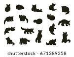 cute red panda animal cartoon... | Shutterstock .eps vector #671389258
