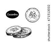 fresh cucumber. hand drawn... | Shutterstock .eps vector #671513032