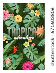 bright tropical design with... | Shutterstock .eps vector #671603806