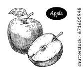 Fresh Apple. Hand Drawn Sketch...
