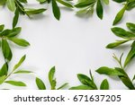 frame with branches and green... | Shutterstock . vector #671637205