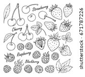 set of vector fruits and...