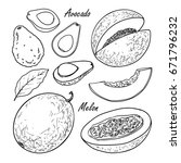 set of vector fruits  avocado ...   Shutterstock .eps vector #671796232