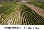 agricultural crops fields in... | Shutterstock . vector #671836762