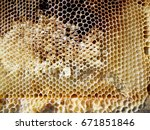 the photo shows beehive honey... | Shutterstock . vector #671851846