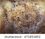 background hexagon texture  wax ... | Shutterstock . vector #671851852