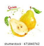 watercolor illustration of... | Shutterstock . vector #671860762