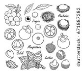 set of vector tropical fruits ... | Shutterstock .eps vector #671887282