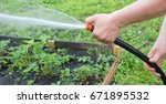 watering the garden with a hose | Shutterstock . vector #671895532