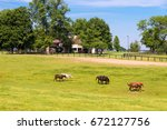 horses at horse farm. country... | Shutterstock . vector #672127756