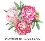 watercolor hand drawing ... | Shutterstock . vector #672151702