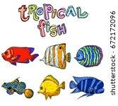 bright tropical sea fish  ...   Shutterstock .eps vector #672172096