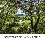 scotch pine and distant view of ... | Shutterstock . vector #672212845