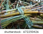 freshly cut sugarcane stalks at ... | Shutterstock . vector #672250426