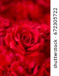 red rose background  wedding... | Shutterstock . vector #672305722