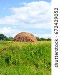 haycock standing on the green... | Shutterstock . vector #672429052