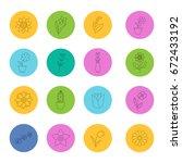 flowers linear icons set.... | Shutterstock .eps vector #672433192