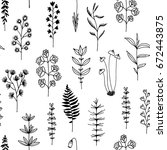 seamless pattern with black... | Shutterstock . vector #672443875