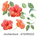 Watercolor Tropical Flower Red...