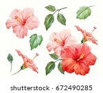 watercolor tropical flower red... | Shutterstock . vector #672490285
