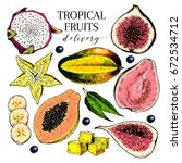 vector hand drawn exotic fruits.... | Shutterstock .eps vector #672534712