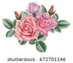 hand painted watercolor... | Shutterstock . vector #672701146