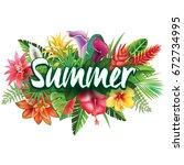 summer banner from tropical ... | Shutterstock .eps vector #672734995