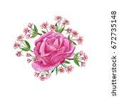 watercolor flowers composition... | Shutterstock . vector #672735148