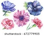 vintage watercolor elements... | Shutterstock . vector #672779905