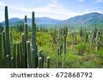tehuac n cuicatl n biosphere...   Shutterstock . vector #672868792