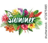 summer banner from tropical and ... | Shutterstock .eps vector #672875485