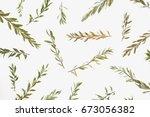 flat lay creative arrangement... | Shutterstock . vector #673056382