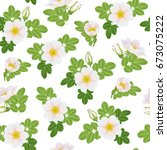 Stock vector dog rose branch with flowers and leaves background seamless pattern wild rose vector illustration 673075222