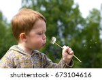 little redhead boy in the field ... | Shutterstock . vector #673104616