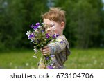 little redhead boy in the field ... | Shutterstock . vector #673104706