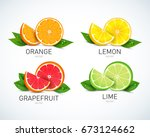 citrus fruits halves and... | Shutterstock .eps vector #673124662