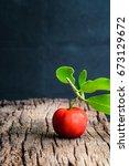 barbados cherry ripe thai... | Shutterstock . vector #673129672