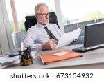 portrait of mature businessman... | Shutterstock . vector #673154932