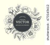 vintage botanical background... | Shutterstock .eps vector #673165612