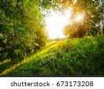 summer green meadow with trees | Shutterstock . vector #673173208