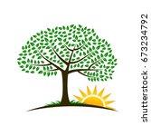 tree sunrise image logo | Shutterstock .eps vector #673234792